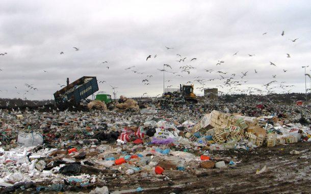 Atliekų tvarkytojams algos pavydi net meras